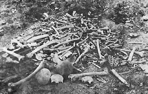 Armenian massacres at Erzinjan